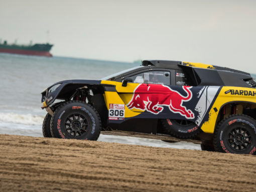 Covering 3008 DKR S. LOEB 2019